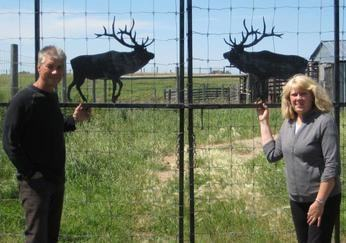 Perry and Lori Ulrich from Country Gold Elk Velvet Antler